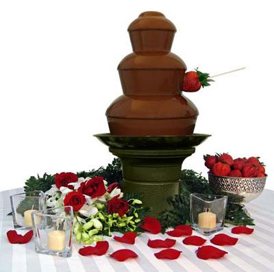 echipament HoReCa, fantana de ciocolata, fantani de ciocolata
