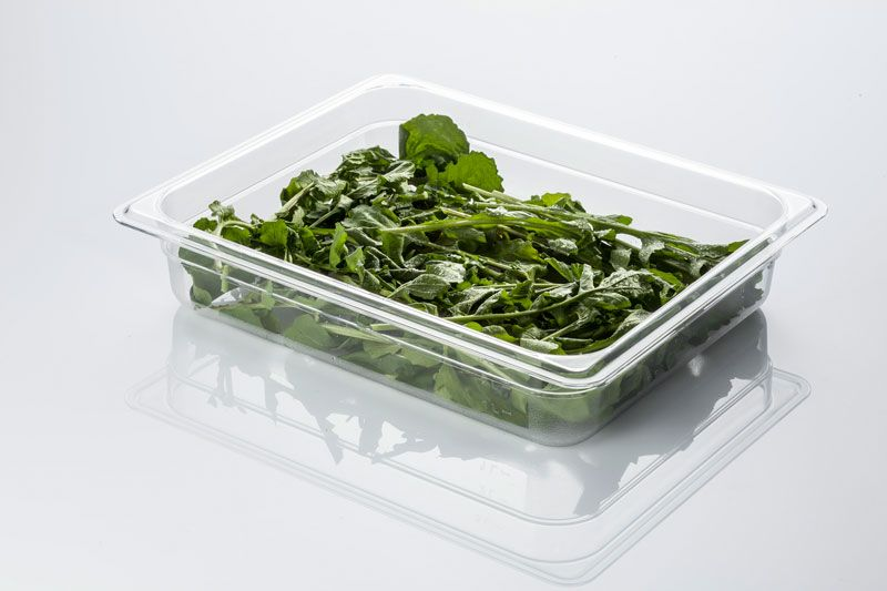 Tava gastronorm | GN 1/2-65 mm policarbonat