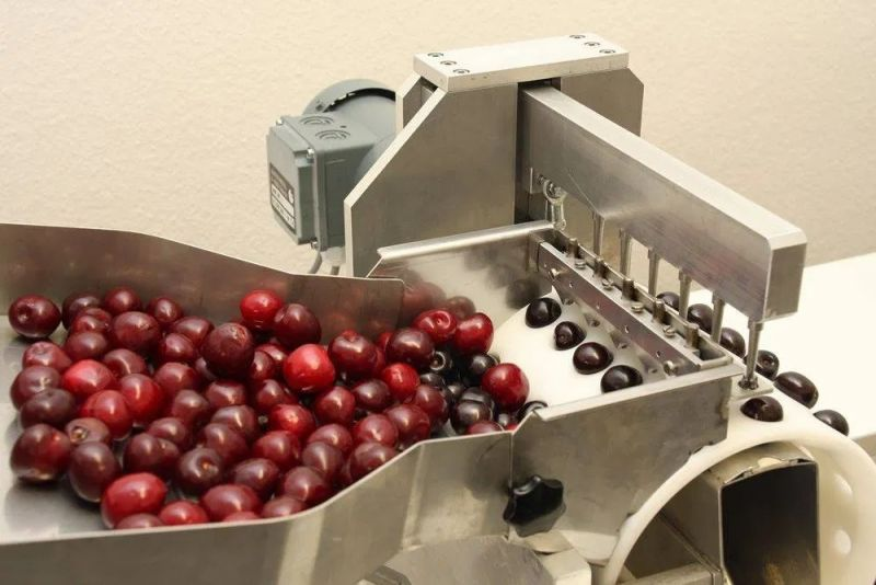 Masina automata pentru scos samburi cirese | visine